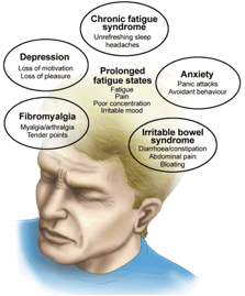 chronicfatiguesyndrome